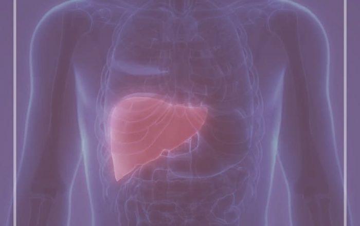 esteatose hepatica